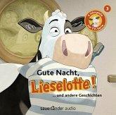 Gute Nacht, Lieselotte! / Lieselotte Filmhörspiele Bd.3 (1 Audio-CD)