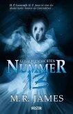 Nummer 13 - Geistergeschichten (eBook, ePUB)