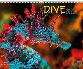 Dive 2021