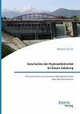Geschichte der Hydroelektrizität im Raum Salzburg. Eine historische und industriearchäologische Studie alter Wasserkraftwerke (eBook, PDF)