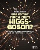 Was kommt nach dem Higgs-Boson? (eBook, PDF)