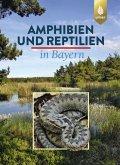 Amphibien und Reptilien in Bayern (eBook, PDF)