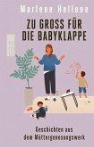 Zu groß für die Babyklappe (eBook, ePUB)