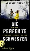 Die perfekte Schwester (eBook, ePUB)