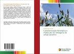 Caracterização fenotípica e molecular de linhagens de sorgo sacarino
