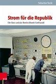 Strom für die Republik (eBook, PDF)