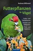 Futterpflanzen für Vögel