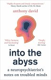 Into the Abyss (eBook, ePUB)