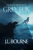 Day By Day Armageddon: Grey Fox (eBook, PDF)