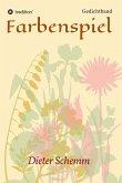 Farbenspiel (eBook, ePUB)