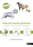 Atlas der Hundeanatomie