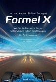 Formel X (eBook, ePUB)