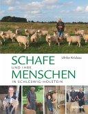 Schafe!