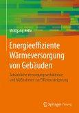 Energieeffiziente Wärmeversorgung von Gebäuden (eBook, PDF)