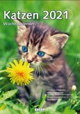 Katzen 2021