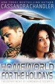 Homeworld for the Holidays (The Department of Homeworld Security, #12) (eBook, ePUB)