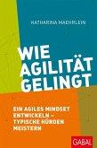 Wie Agilität gelingt (eBook, PDF)