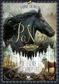 Die Legende der Windpferde / PaNia Bd.1
