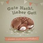 Gute Nacht, lieber Gott, 1 Audio-CD
