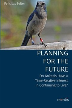 Planning for the Future - Selter, Felicitas