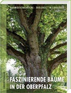 Faszinierende Bäume in der Oberpfalz - Schuller, Jürgen