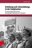Erziehung und »Unerziehung« in der Sowjetunion (eBook, PDF)