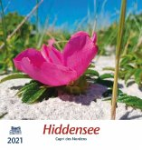 Hiddensee 2021 Postkartenkalender