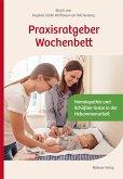 Praxisratgeber Wochenbett (eBook, PDF)