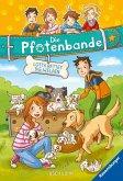 Lotta rettet die Welpen / Die Pfotenbande Bd.1 (Mängelexemplar)