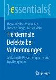 Tiefdermale Defekte bei Verbrennungen (eBook, PDF)