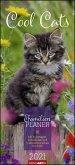 Familienplaner Cool Cats - Kalender 2021