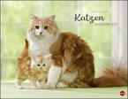 Wegler Katzenkalender 2021