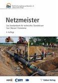 Netzmeister (eBook, PDF)