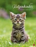 Katzenkinder Posterkalender 2021