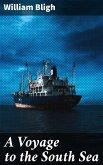 A Voyage to the South Sea (eBook, ePUB)