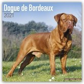 Dogue de Bordeaux 2021 Wall Calendar