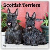 Scottish Terriers - Scottish Terrier 2021 - 18-Monatskalender mit freier DogDays-App