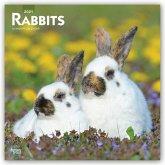 Rabbits - Kaninchen 2021 - 18-Monatskalender