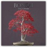Bonsai 2021 - 16-Monatskalender
