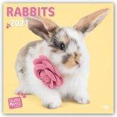 Rabbits Rule - Kaninchen 2021 - 18-Monatskalender