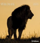 Wildlife 2021 - Foto-Kalender - Wildnis
