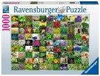 99 Kräuter und Gewürze (Puzzle)