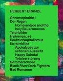 Herbert Brandl. Exposed to Painting. Die letzten 20 Jahre / The past 20 years