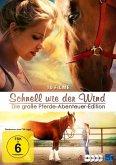 Schnell wie der Wind - Die große Pferde-Abenteuer-Edition - 10 Filme Edition DVD-Box