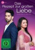Das Rezept zur grossen Liebe - Zindagi Ki Mehek (Folge 81 - 100) DVD-Box