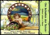 Mystische Plätze - Magische Pflanzen im Harz Bd. 1