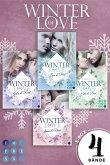 Winter of Love Bd.1-4 (eBook, ePUB)