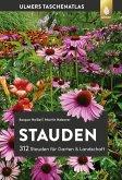 Stauden (eBook, PDF)