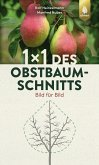 1 x 1 des Obstbaumschnitts (eBook, PDF)