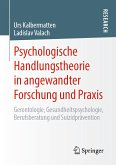 Psychologische Handlungstheorie in angewandter Forschung und Praxis (eBook, PDF)